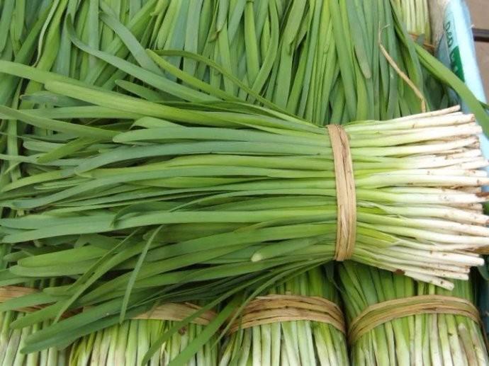 中国人有多爱吃韭菜?春天打个饱嗝,嘴里喷出一股韭菜味儿 ..._图1-3