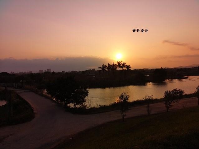 【青竹凌云】婉婉日辉静静艳(原创摄影)_图1-1