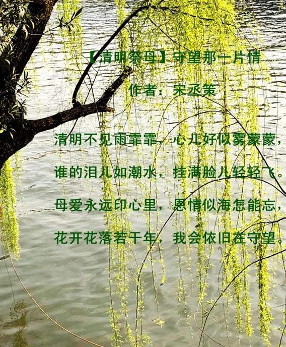 【清明祭母】守望那一片情_图1-1