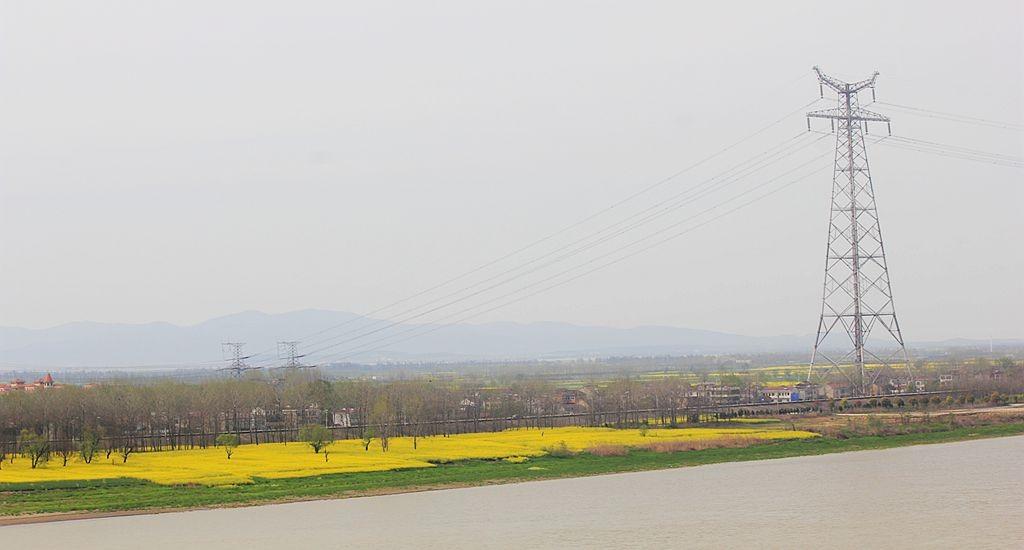 江边的油菜田_图1-1