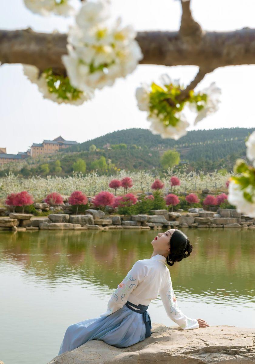 发现民族舞女孩吕锦涛 在樱桃花开白如雪的马泉翩翩起舞_图1-1
