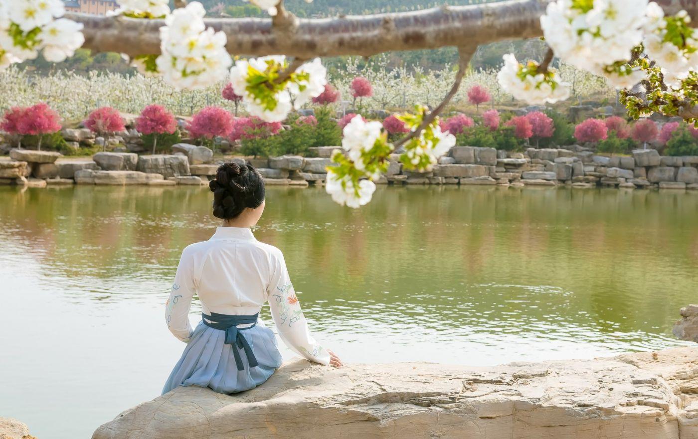 发现民族舞女孩吕锦涛 在樱桃花开白如雪的马泉翩翩起舞_图1-3