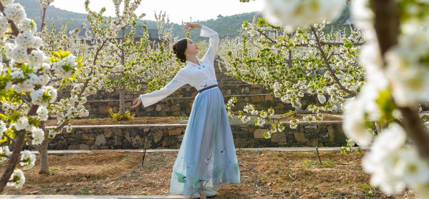 发现民族舞女孩吕锦涛 在樱桃花开白如雪的马泉翩翩起舞_图1-5