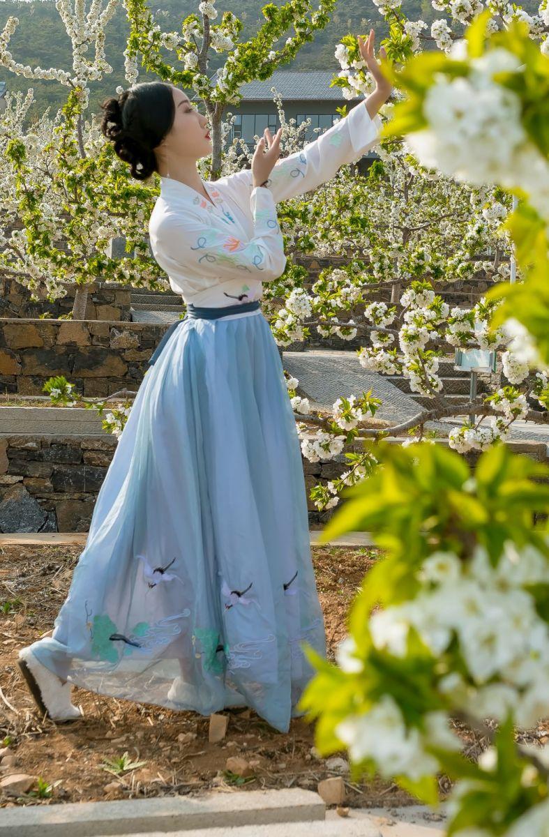 发现民族舞女孩吕锦涛 在樱桃花开白如雪的马泉翩翩起舞_图1-9
