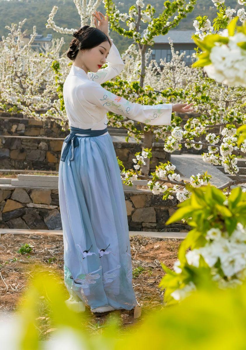 发现民族舞女孩吕锦涛 在樱桃花开白如雪的马泉翩翩起舞_图1-8