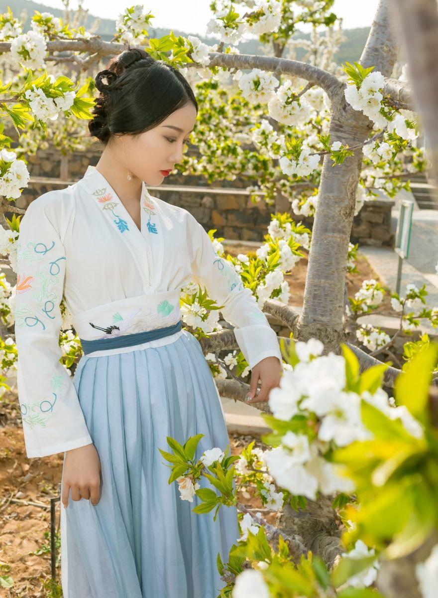 发现民族舞女孩吕锦涛 在樱桃花开白如雪的马泉翩翩起舞_图1-11
