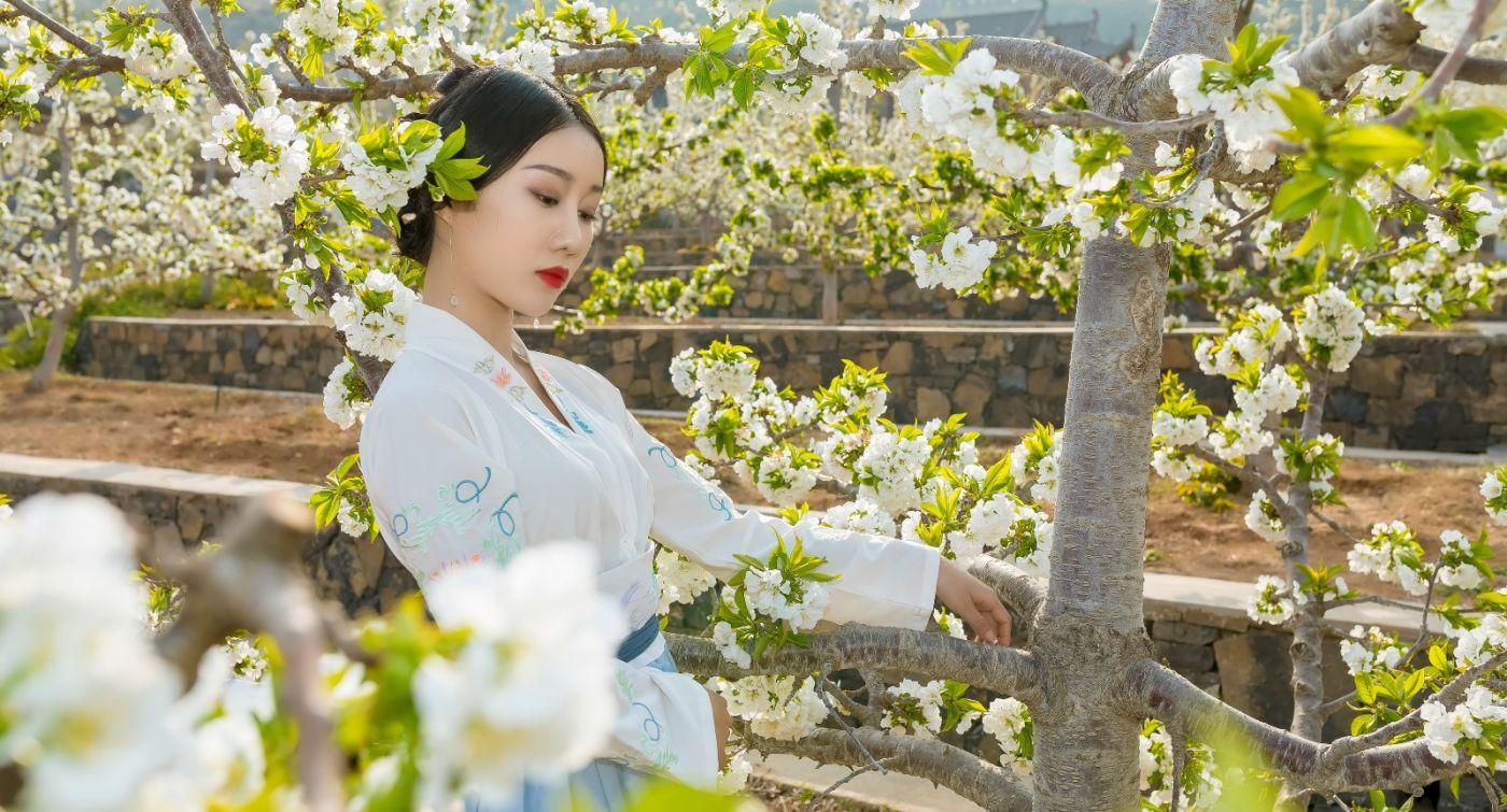 发现民族舞女孩吕锦涛 在樱桃花开白如雪的马泉翩翩起舞_图1-13