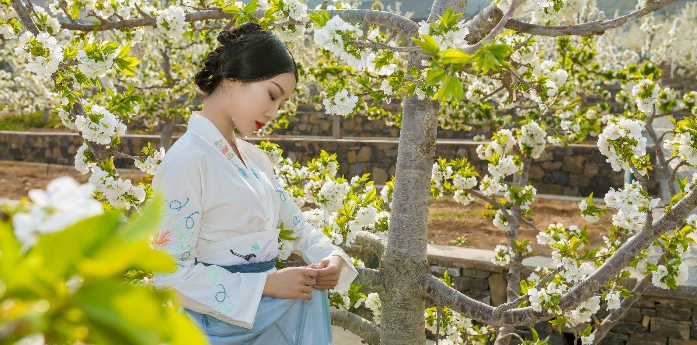 发现民族舞女孩吕锦涛 在樱桃花开白如雪的马泉翩翩起舞_图1-15
