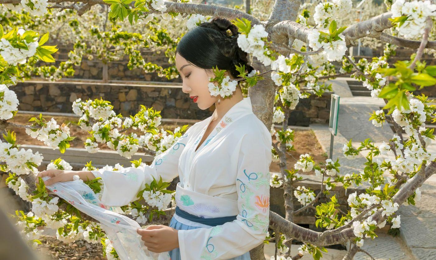 发现民族舞女孩吕锦涛 在樱桃花开白如雪的马泉翩翩起舞_图1-16