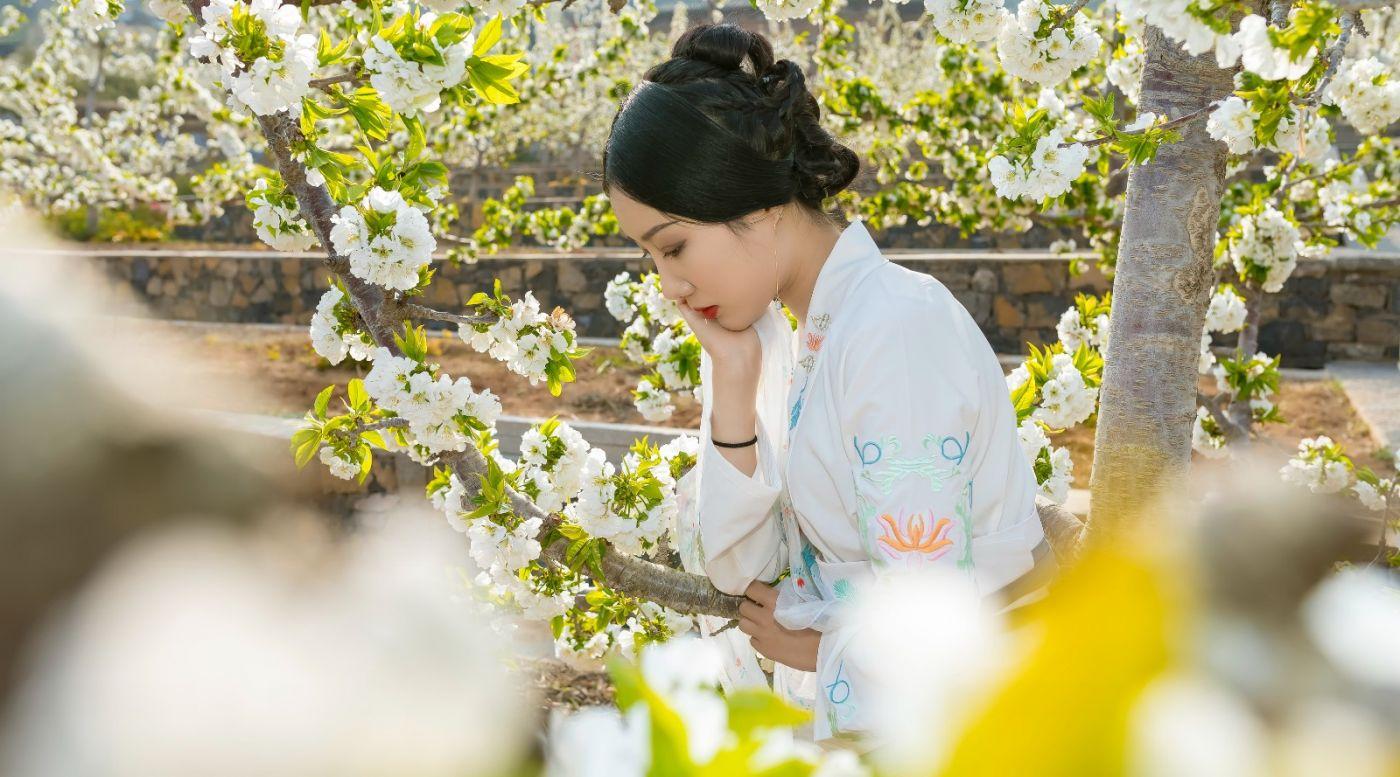 发现民族舞女孩吕锦涛 在樱桃花开白如雪的马泉翩翩起舞_图1-17