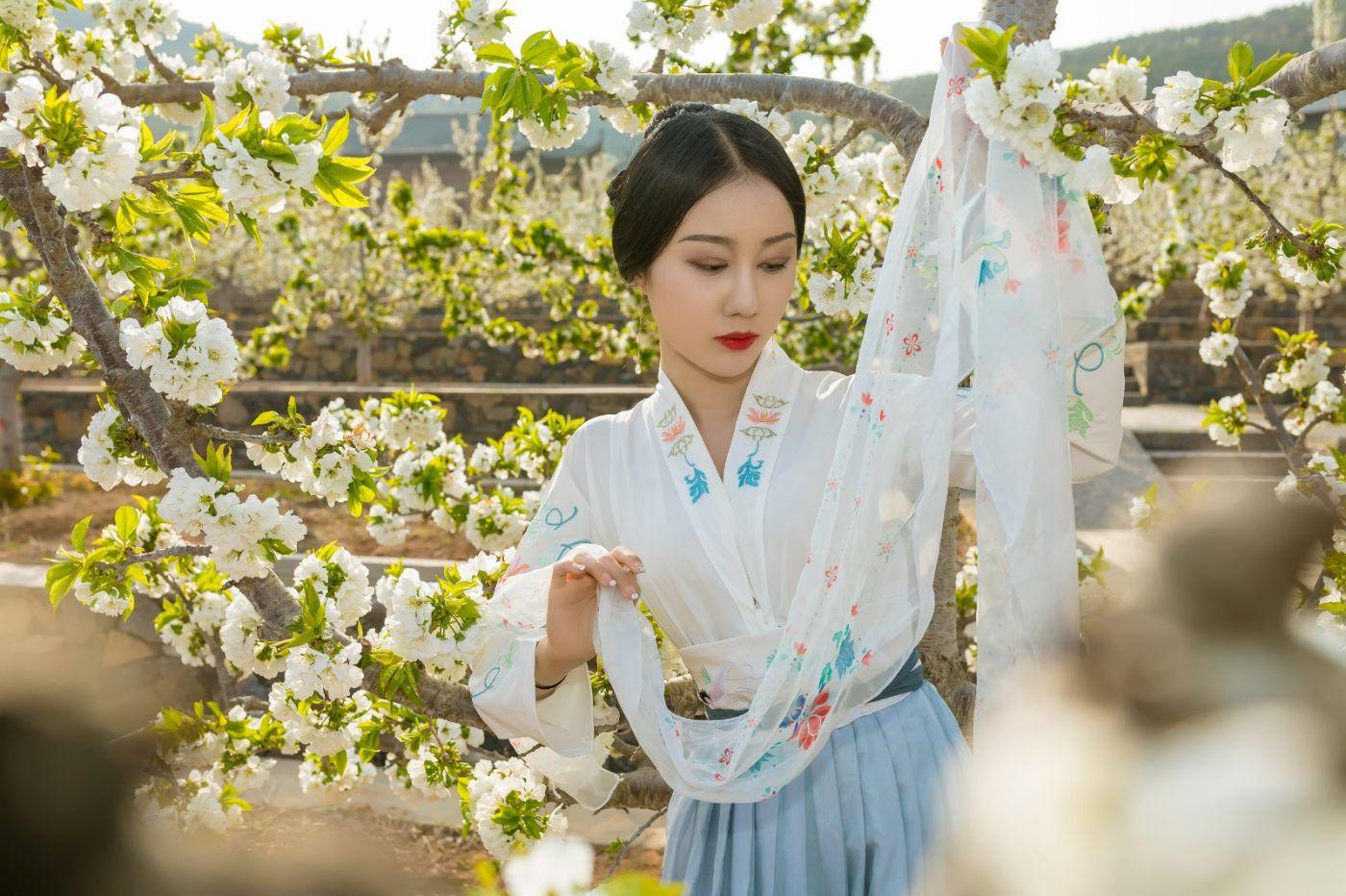 发现民族舞女孩吕锦涛 在樱桃花开白如雪的马泉翩翩起舞_图1-18