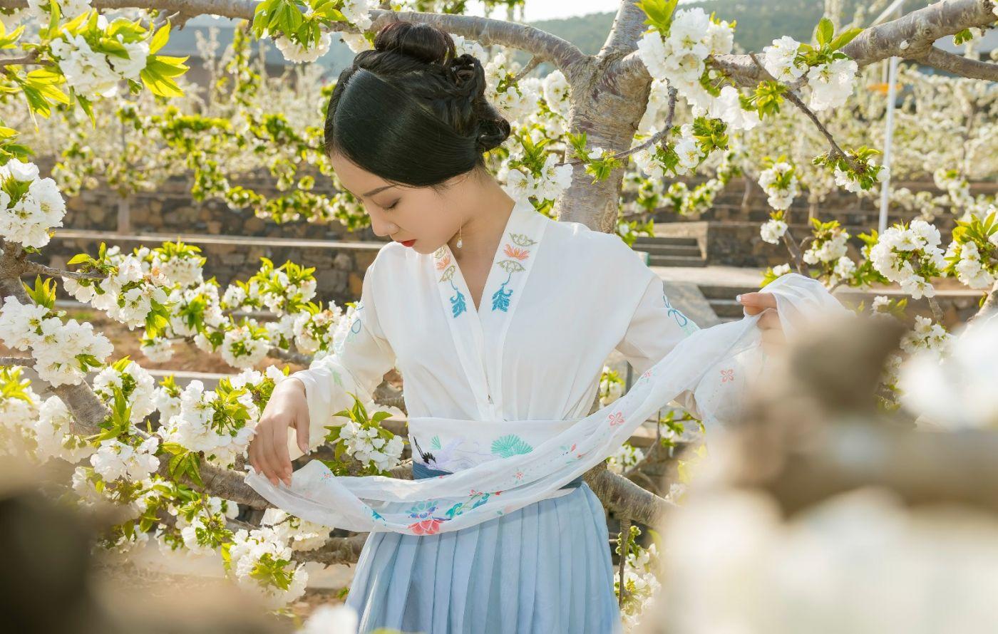 发现民族舞女孩吕锦涛 在樱桃花开白如雪的马泉翩翩起舞_图1-19