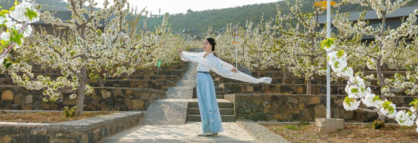 发现民族舞女孩吕锦涛 在樱桃花开白如雪的马泉翩翩起舞_图1-21