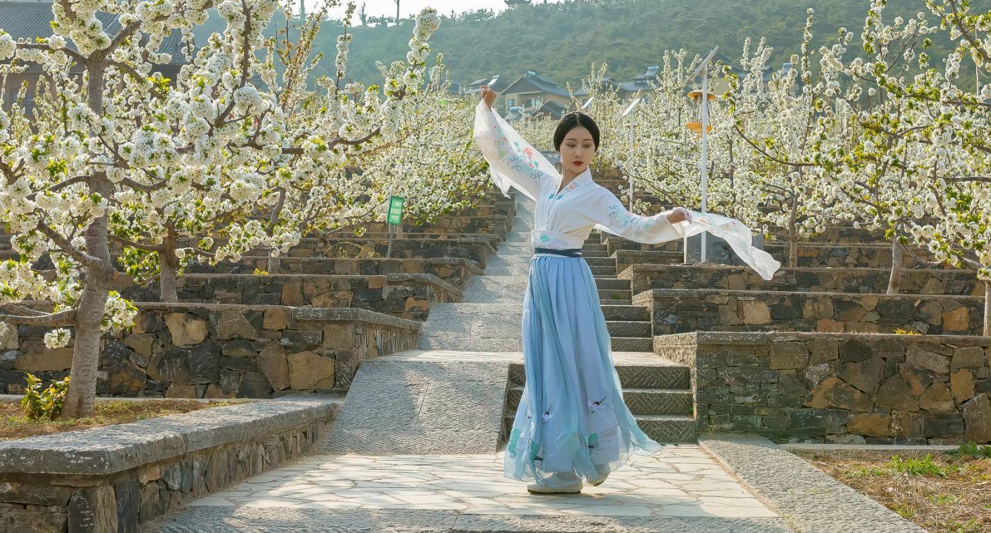 发现民族舞女孩吕锦涛 在樱桃花开白如雪的马泉翩翩起舞_图1-22