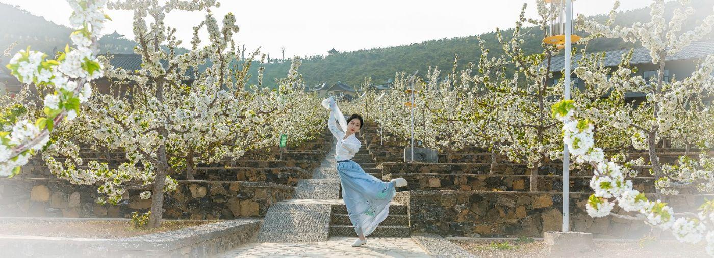 发现民族舞女孩吕锦涛 在樱桃花开白如雪的马泉翩翩起舞_图1-23