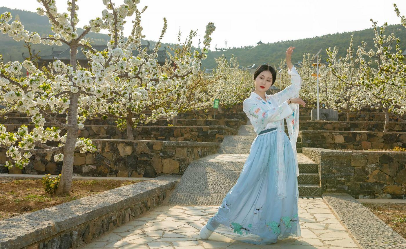 发现民族舞女孩吕锦涛 在樱桃花开白如雪的马泉翩翩起舞_图1-24