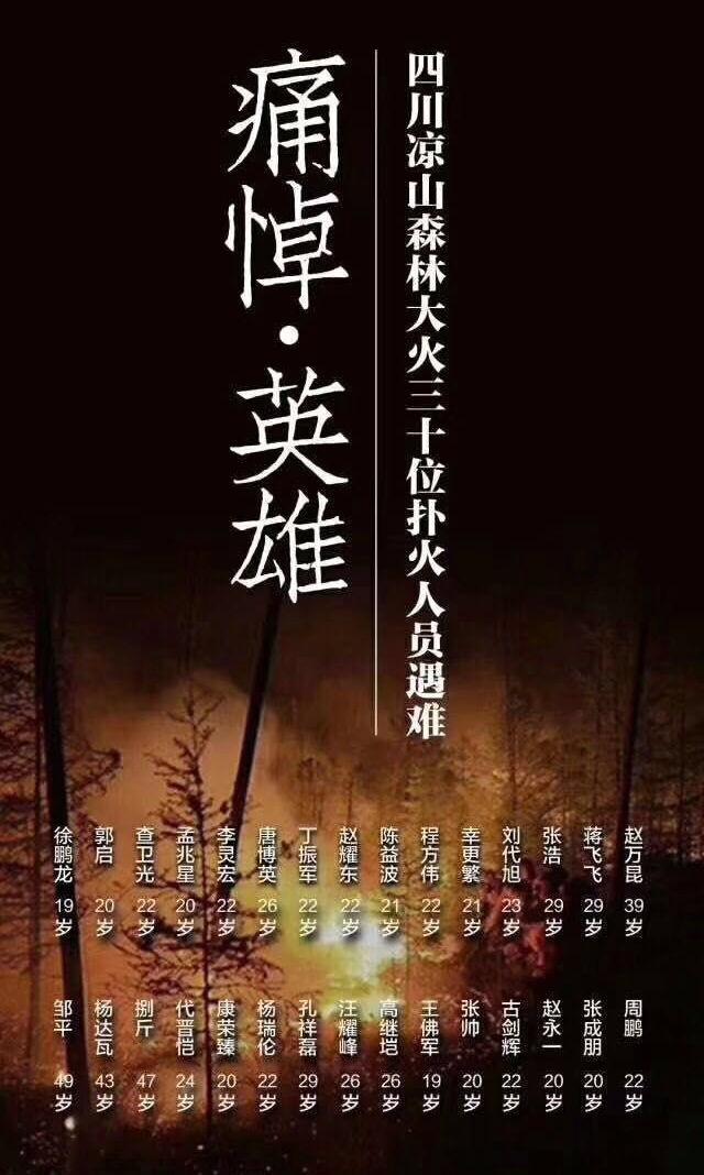 清明祭凉山消防英雄(七律二首)_图1-1