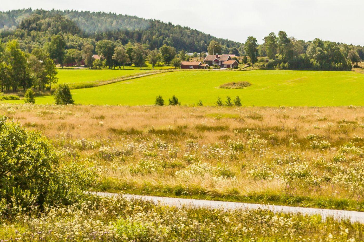 北欧旅途,美丽的田园_图1-37