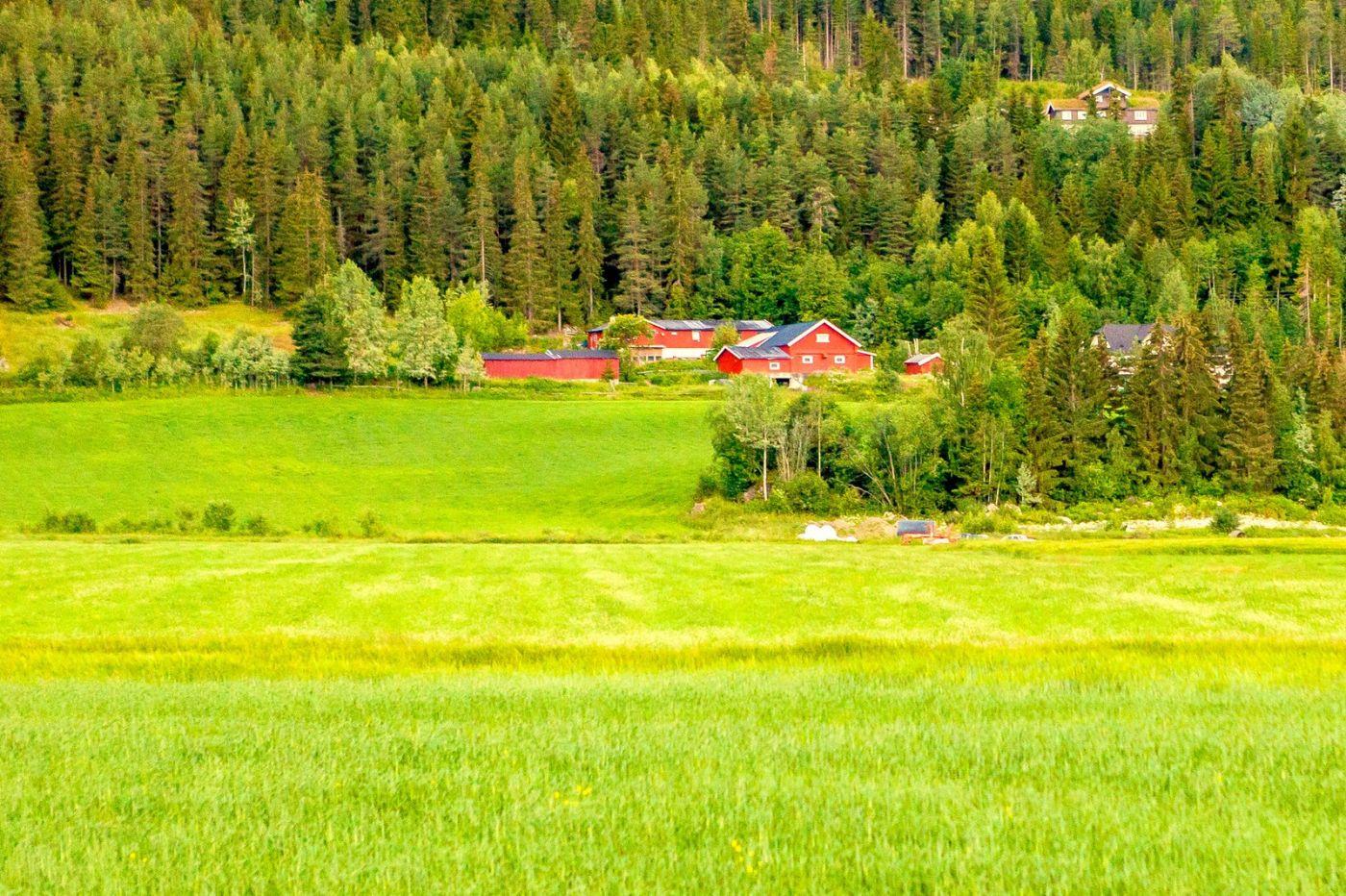 北欧旅途,美丽的田园_图1-35