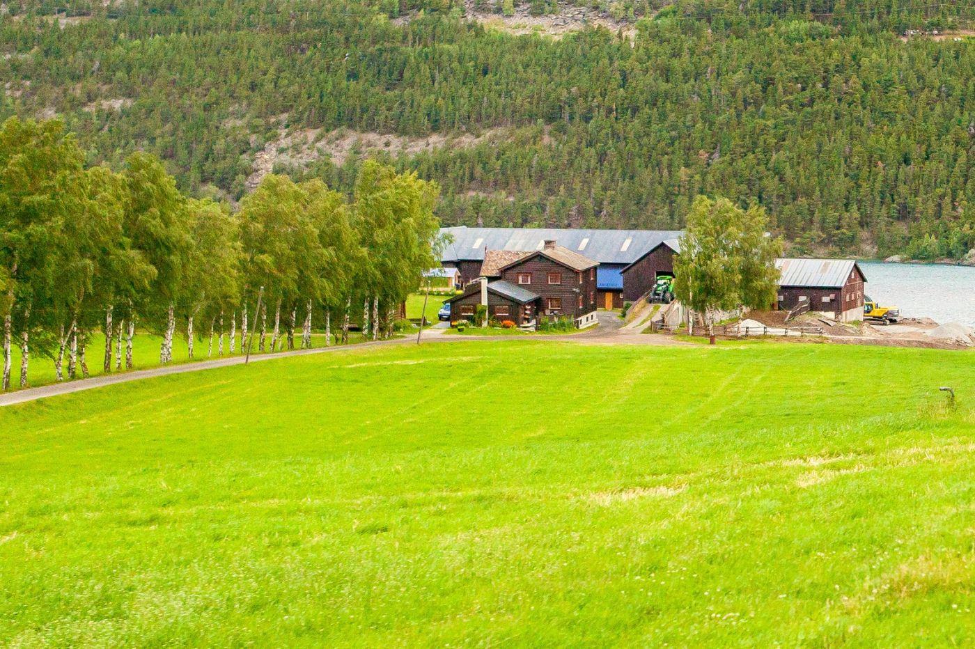 北欧旅途,美丽的田园_图1-27