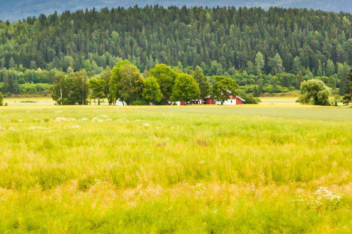 北欧旅途,美丽的田园_图1-23