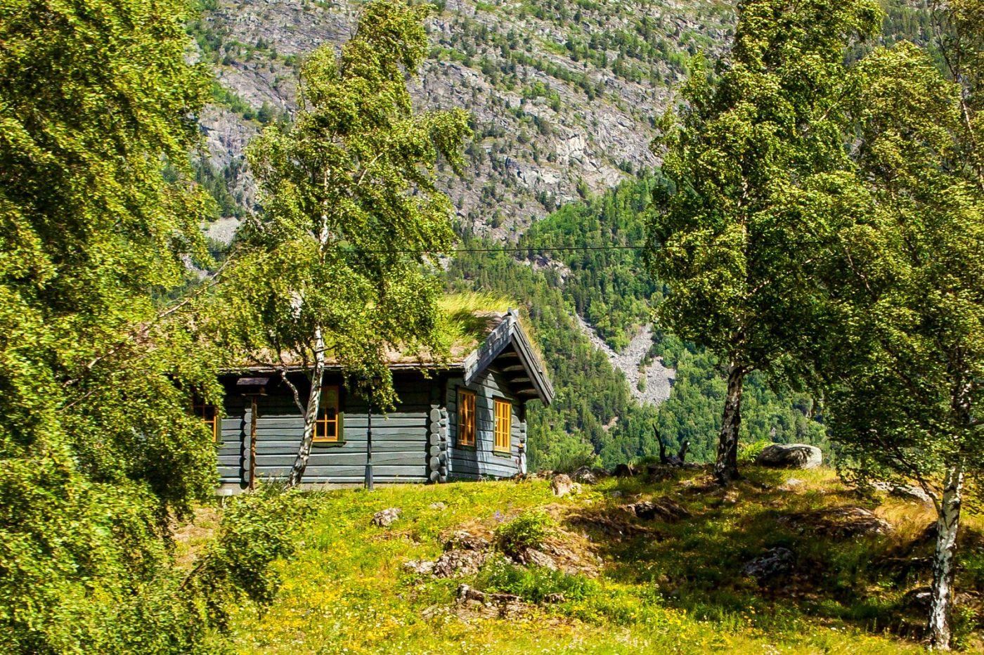 北欧旅途,美丽的田园_图1-21