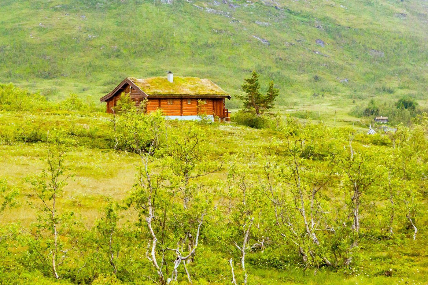 北欧旅途,美丽的田园_图1-15