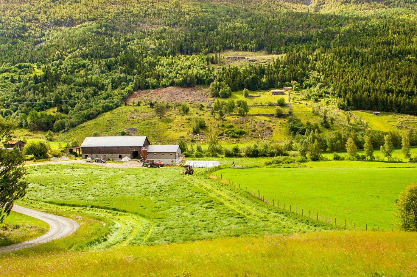 北欧旅途,美丽的田园_图1-14