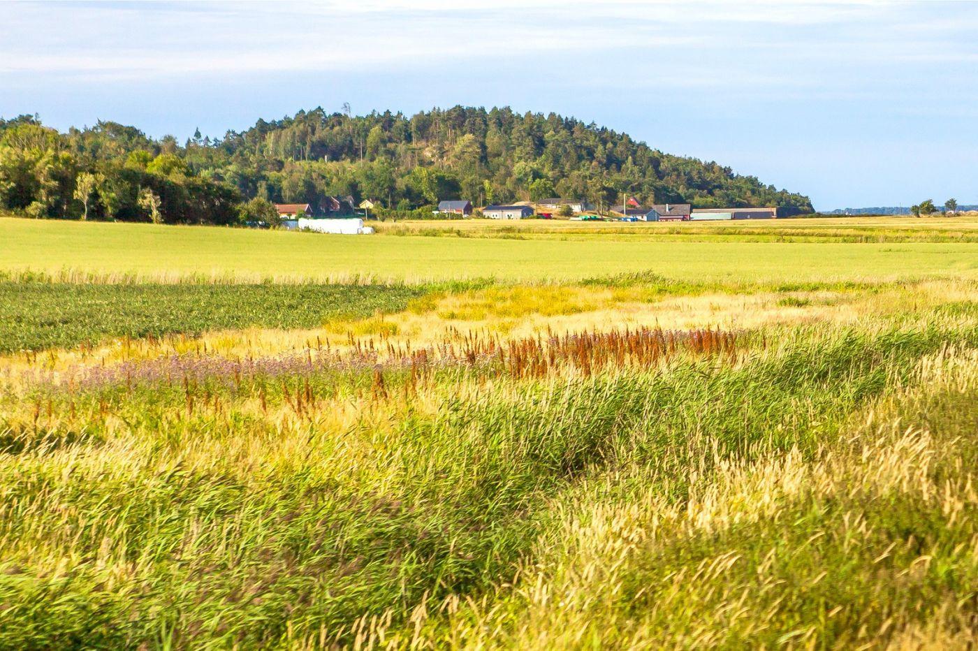 北欧旅途,美丽的田园_图1-4