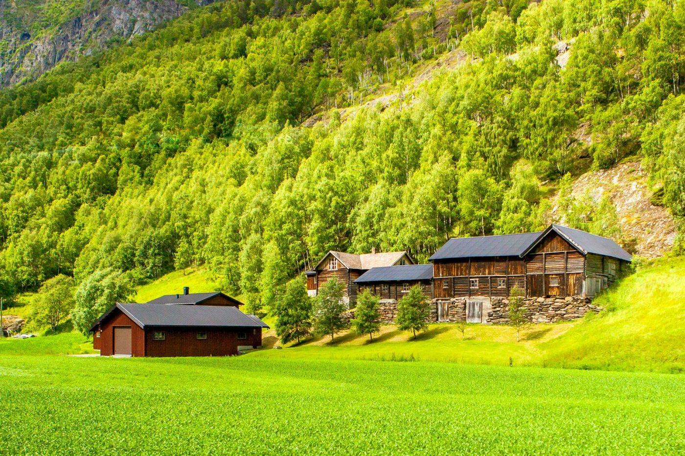 北欧旅途,美丽的田园_图1-3
