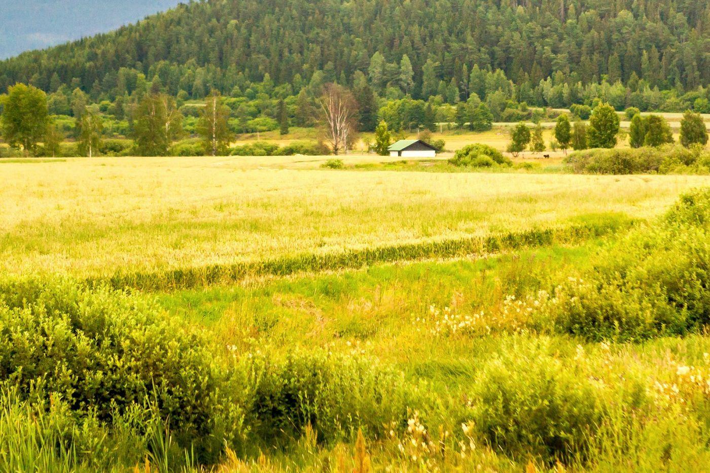 北欧旅途,美丽的田园_图1-2