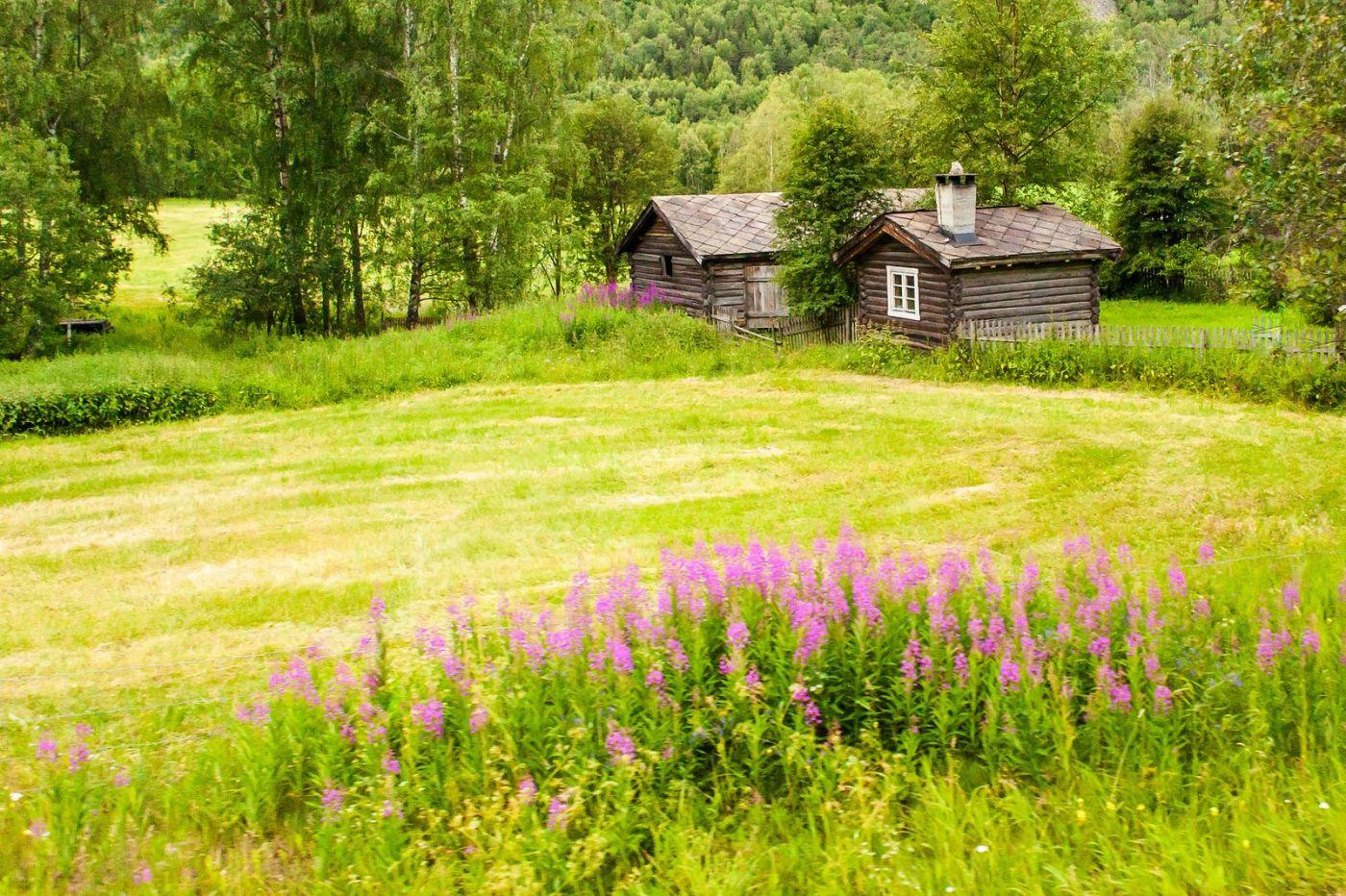 北欧旅途,美丽的田园_图1-1
