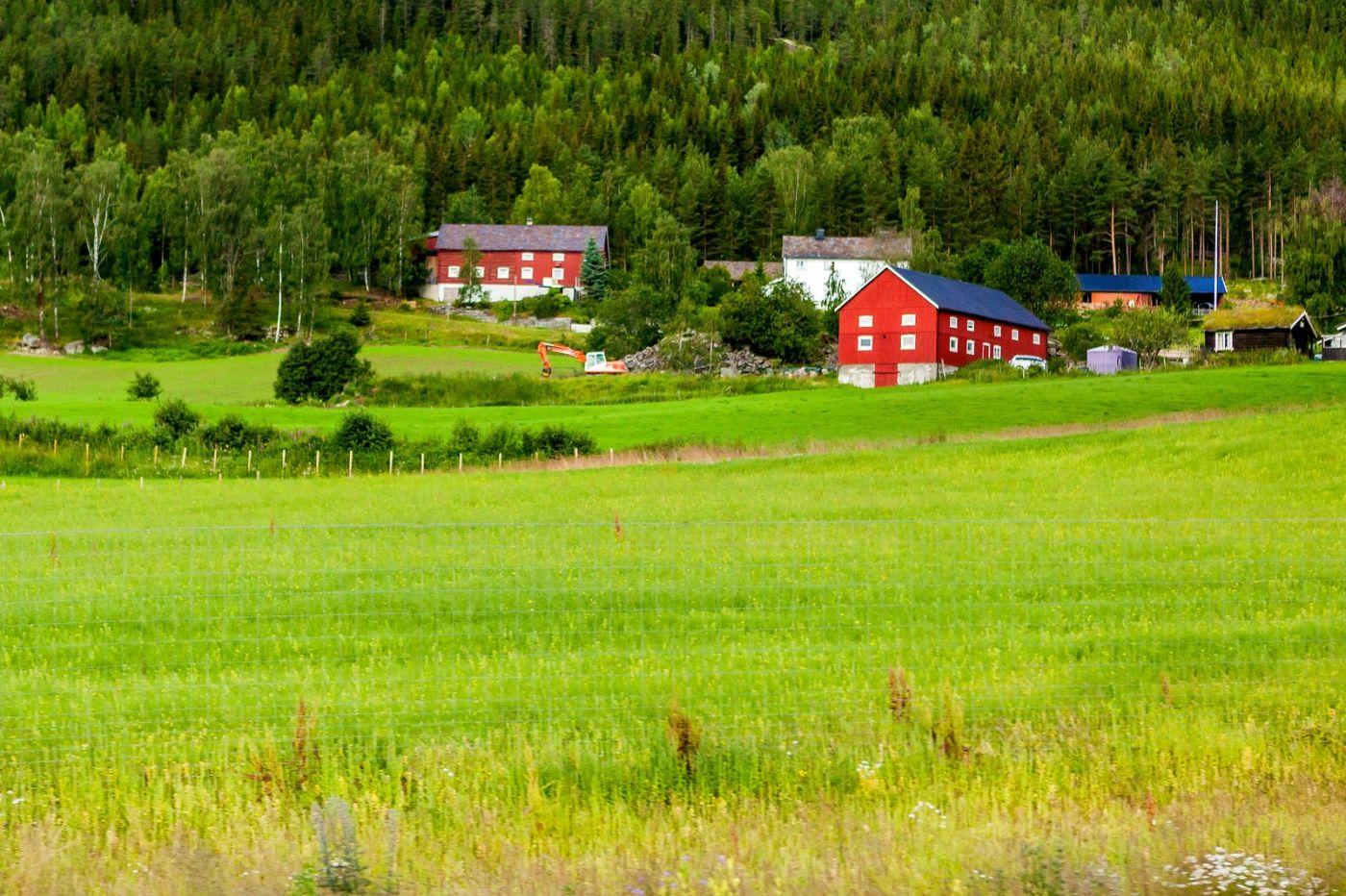 北欧旅途,美丽的田园_图1-7