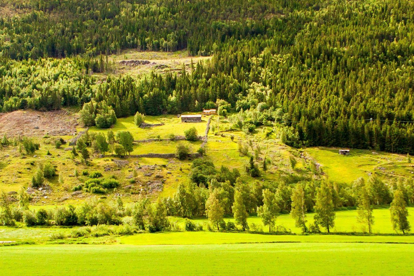 北欧旅途,美丽的田园_图1-12