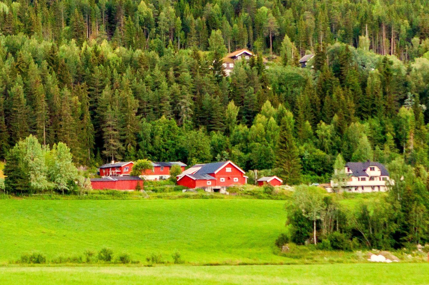 北欧旅途,美丽的田园_图1-10