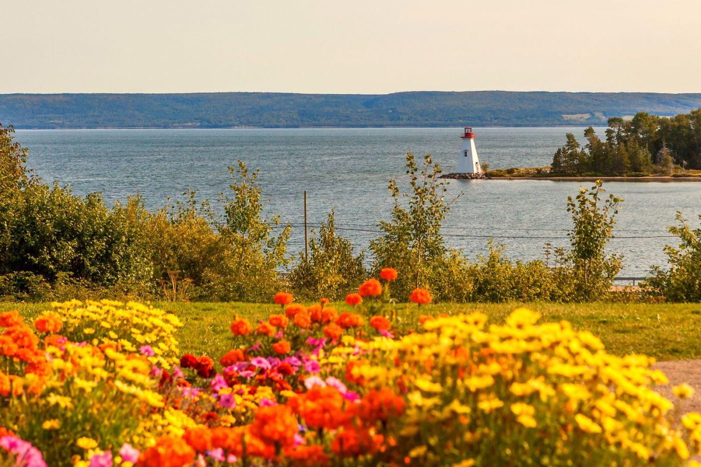 加拿大Nova Scotia, 帆船灯塔老鹰_图1-40