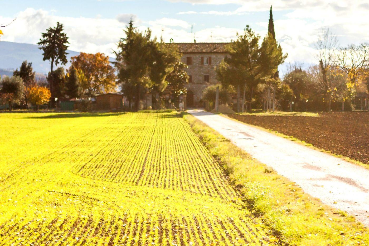 意大利路途,这就是乡村生活?_图1-33