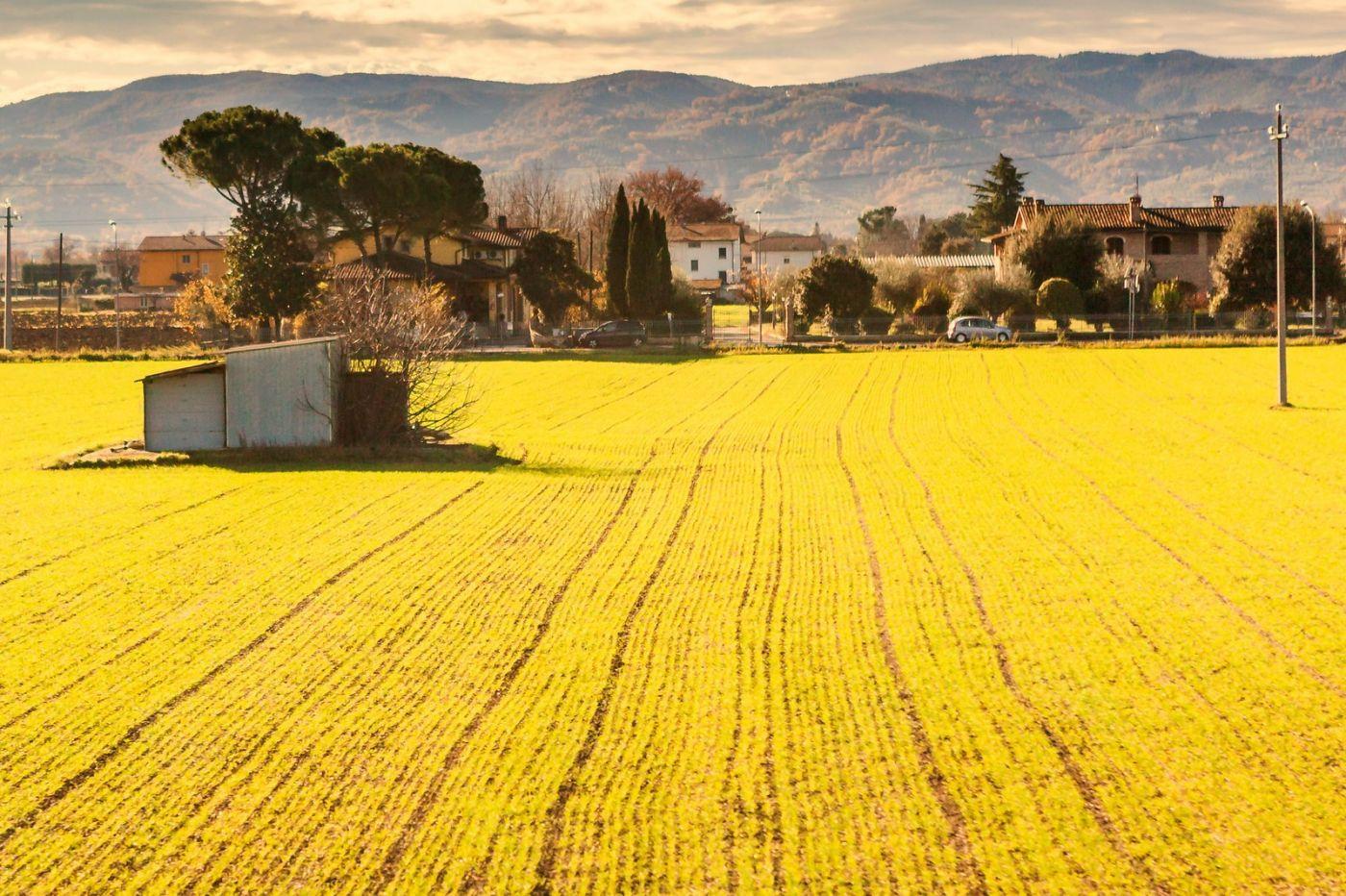 意大利路途,这就是乡村生活?_图1-31