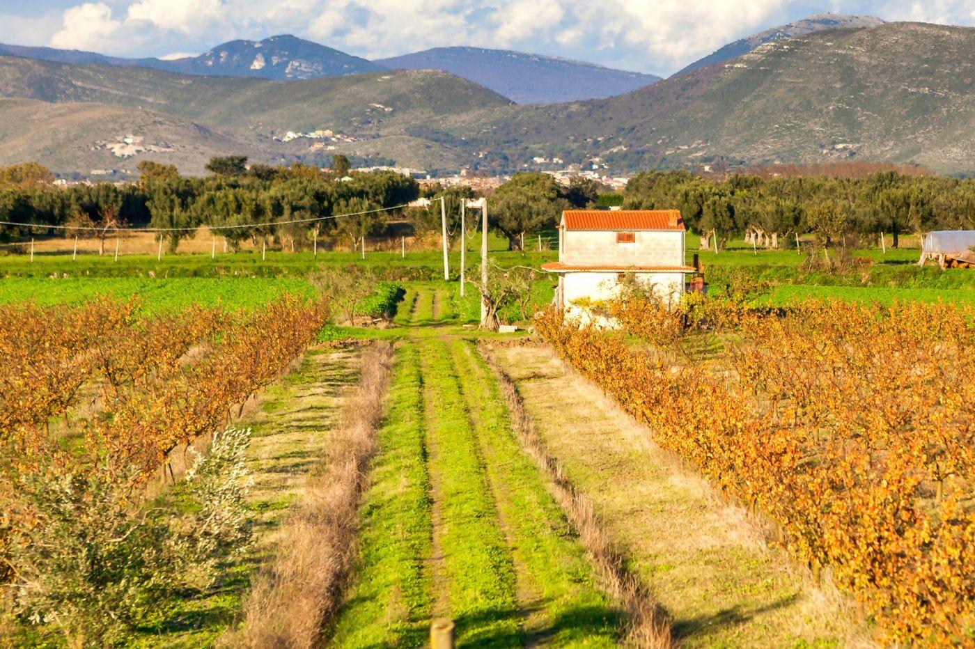 意大利路途,这就是乡村生活?_图1-10