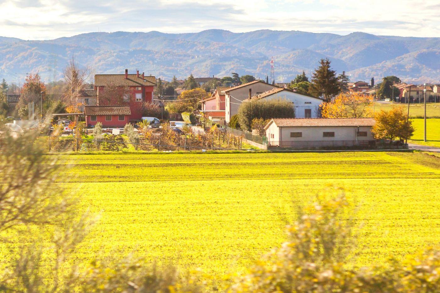 意大利路途,这就是乡村生活?_图1-5