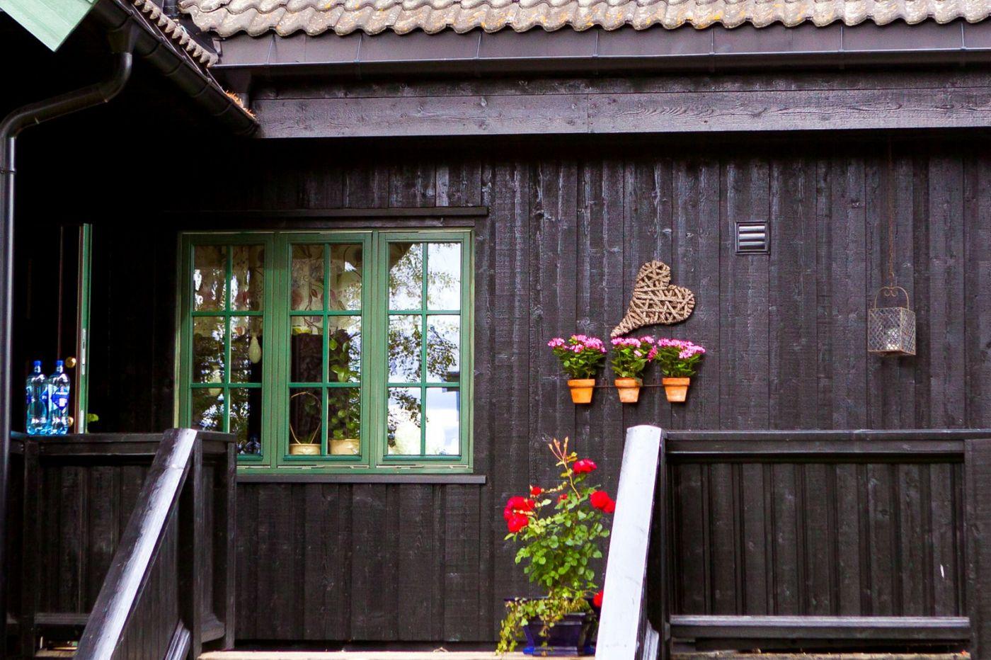 挪威奥塞罗,走在街头巷尾_图1-23