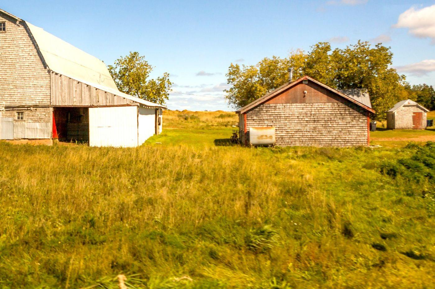加拿大旅途,家还是自己的好_图1-11