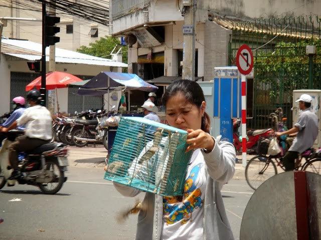 行走越南今日的西贡_图1-22