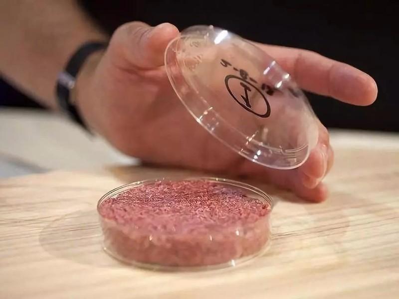 疯狂的人造肉:60天长肉5000多吨,比养猪快几万倍,你敢吃吗? ..._图1-4