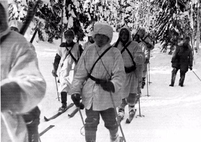 苏芬战争双方伤亡人员情况,没想到苏军阵亡人数是芬军的两倍多 ..._图1-1