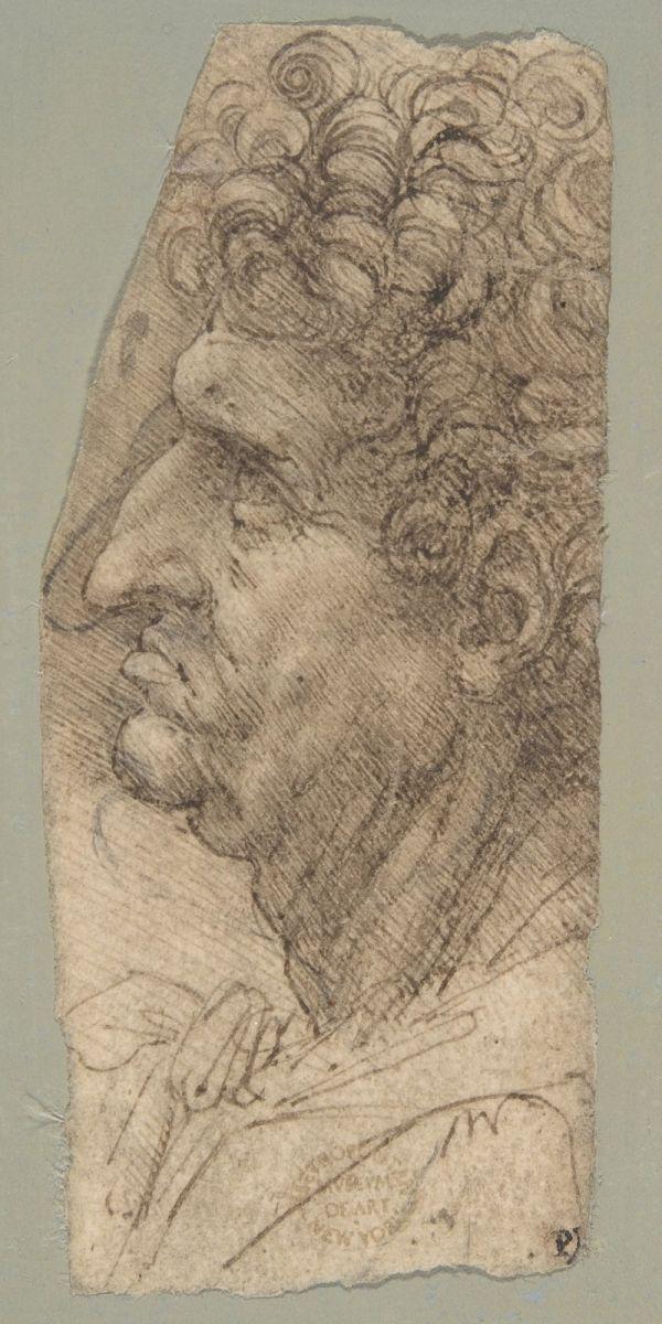 大都会博物馆纪念达芬奇去世500周年_图1-2