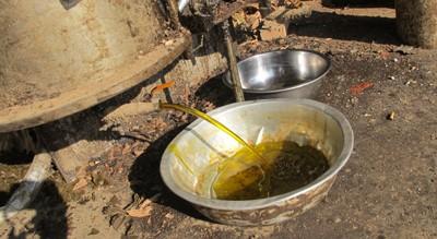 高娓娓:活久见!原来菜籽油是这样榨出来的_图1-12