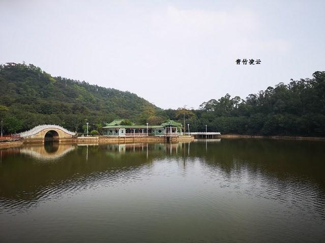 【青竹凌云】水天琴乐(原创摄影)_图1-1
