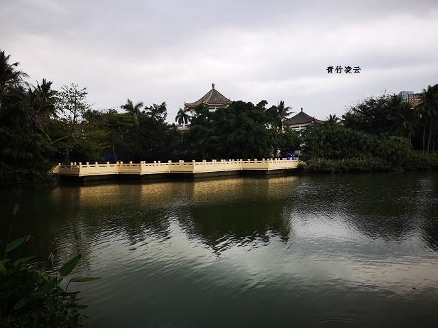 【青竹凌云】水天琴乐(原创摄影)_图1-4