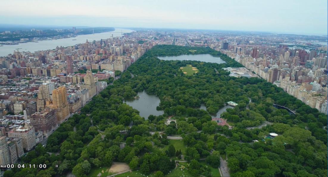 纽约之美--中央公园(Central Park)_图1-5